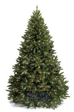 Ель Royal Christmas Washington LED 230150-LED (150 см)Елки искусственные<br><br> Как известно, ёлка - один из главных атрибутов Нового года. В преддверии зимних праздников появляется всё больше забот и хлопот. И искать каждый год живую ёлку за несколько дней до торжества совсем не удобно. Ель Royal Christmas поможет провести праздник в атмосфере настоящего волшебства. Очень красивые ёлки этого голландского производителя выглядят как живые. Они будут радовать как детей, так и взрослых. Ели очень устойчивы. А простая и быстрая сборка новогоднего дерева не отнимет у Вас много времени.<br><br><br> Ель Royal Christmas Washington LED на столько реальна, насколько это вообще возможно, на 100% высочайшее качество! Внешний вид этого новогоднего дерева взят с реальной сосны; ветки имеют коричневую сердцевину и приятного зеленого цвета иголки. Ветви из ПВХ производятся в специальной форме особым методом, новым для производства искусственных деревьев. Такой способ делает искусственные елки намного реальнее, чем когда-либо прежде! Ель Royal Christmas Washington LED собирается очень быстро, вам нужно всего лишь расправить ветви, вставить их в соответствующие пазы и елку можно уже наряжать. В эту модель встроены светодиоды LED с теплым светом. Теплый светодиод использует на 85% меньше электроэнергии и продолжает работать до 50 раз дольше, чем обычное освещение. Рождественское дерево всегда поставляется в надежном ящике для хранения, так что вы можете легко упаковать и сохранить елку до следующего года. Для вашей безопасности новогодняя ель изготовлена из огнестойкого материала. Модель Washington LED - это супер реалистичное дерево, широкое к низу и состоящее на 100% из ветвей, повторяющих внешний вид живой ели.<br><br><br>Особенности:<br><br><br><br>Высочайшее качество;<br>Встроенные светодиодные лампочки с теплым светом!<br>Светодиоды потребляют на 85% меньше энергии!<br>Прочный ящик для хранения;<br>Естественный вид, выглядит как настоящее дерево!<br>Эксклюзивная модель: все дет