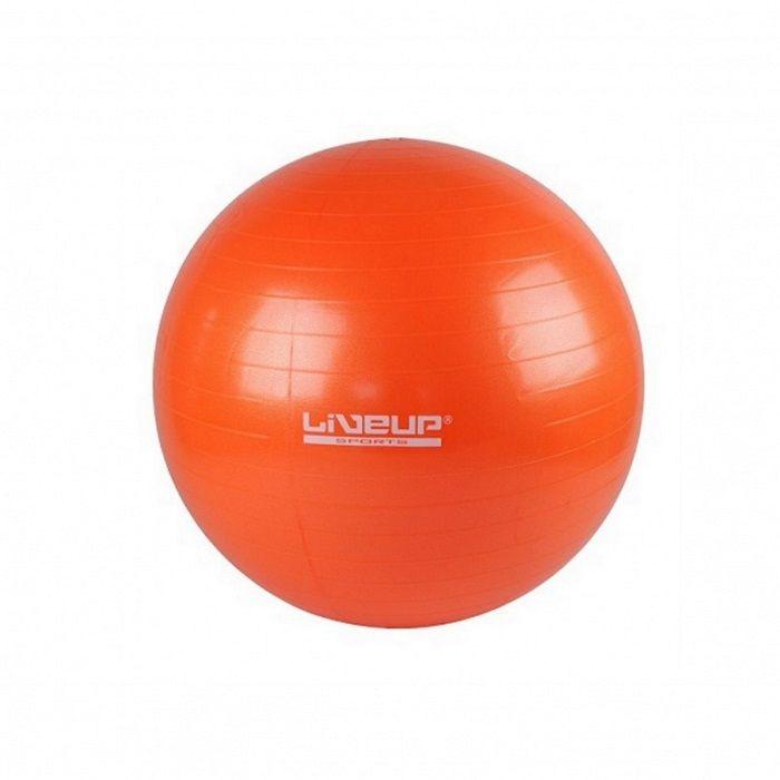 Мяч гимнастический для фитнеса LIVEUP 65 см с насосом, для гимнастики, для укрепления мышц и осанкиФитболы<br>Мяч гимнастический для фитнеса LIVEUP 65 см с насосом<br> <br> <br>  <br> <br> <br>Гимнастический мяч это отличное средство для спортивной и лечебной гимнастики. Мяч изготовлен под контролем качества европейской торговой марки LIVE UP. Подходит для всех возрастных категорий, помогает сформировать правильную осанку, укрепить мышцы корпуса, развить вестибулярный аппарат. Мяч для фитнеса является хорошим дополнением для комплексных тренировок на кардио тренажерах, а также вспомогательным снаряжением для занятий фитнесом и йогой.<br> <br> <br>  <br> <br> <br>На Мяче для гимнастики можно просто сидеть - чудесная альтернативная мебель, снимает нежелательную нагрузку с позвоночника и разгружает суставы. Мяч для фитнеса— полезная вещь для молодых родителей, с помощью него очень удобно укачивать своего малыша и заботиться о фигуре. Мяч может использоваться при массаже новорожденных. Красивый внешний вид и упругая прочная оболочка мячей, вариативность способов применения для различных игр и занятий с детьми делают фитнес-мячи одним из любимых видов спортивно-игрового оборудования. К мячу прилагается насос.<br> <br> <br>  <br> <br> <br>Особенности гимнастического мяча LIVE UP:<br> <br>- Высокая прочность: система «антивзрыв» предотвращает разрыв мяча, делает возможным проводить занятия с мячом в помещении и на улице, а также выдерживать различные нагрузки<br> <br>- Снимает нагрузку: с позвоночника, разгружает суставы<br> <br>- Оздоровительный эффект: применяется в процессе занятий лечебной физкультурой, оздоровительной гимнастикой, реабилитации после травм и операций<br> <br>- Укрепляет: мышечную систему<br> <br>- Корректирует: осанку у взрослых, формирует правильную осанку у детей<br> <br>- Массажный эффект: может использоваться при массажном воздействии (при назначении лечебного или восстановительного массажа для новорожденных)<br> <br>- Улучшает координацию: развива
