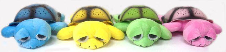 Music Turtle